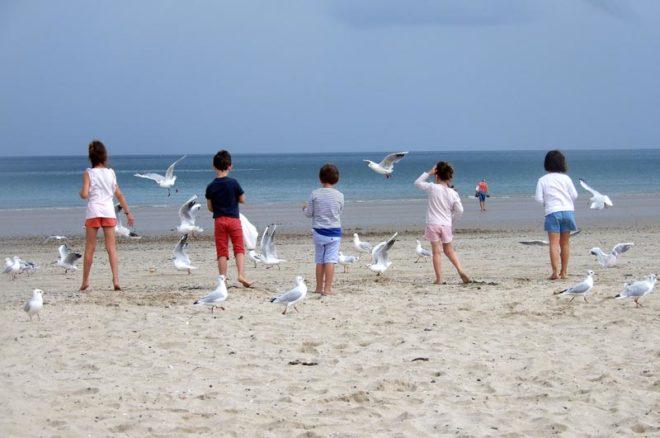 Kinder von hinten nebeneinander am Strand stehend zwischen Möwen